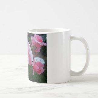 Citrus Tease Coffee Mug