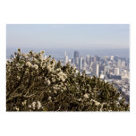 City Behind the Bushes Business Cards