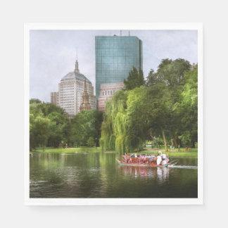 City - Boston Ma - Boston public garden Napkin