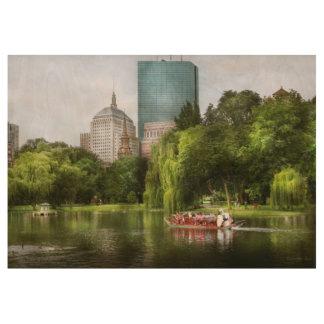 City - Boston Ma - Boston public garden Wood Poster