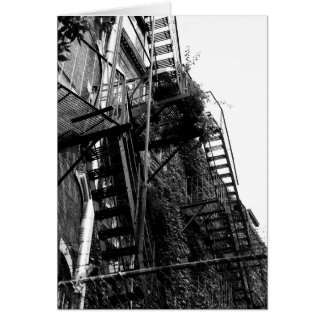 City Building Fire Escape B&W Photo Greeting Card
