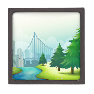 City buildings view with nature keepsake box