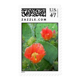 City Cactus 1 stamp