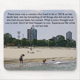 City of Chicago & Lake Michigan Mouse Pad