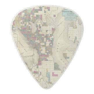City Of Seattle And Environs Acetal Guitar Pick