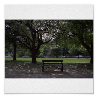 City Park Print