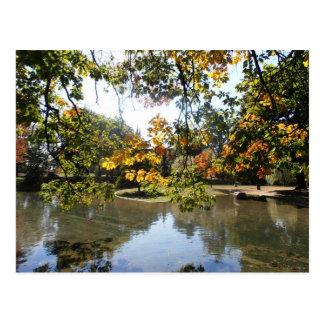 City Pond Postcard