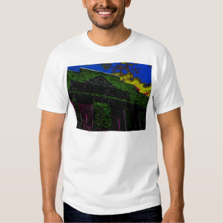 city scapes 015.JPG T-Shirt