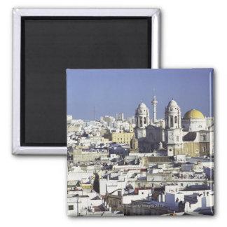 Cityscape of Cadiz, Spain 2 Inch Square Magnet