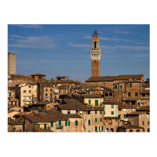 Cityscape of Siena Postcard