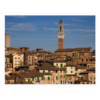 Cityscape of Siena Postcard