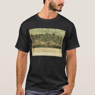 Ciudad California de Sacramento en 1849 por los Playera