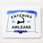 """Ciudad de Cape Cod, Awleans (Orleans a los """"forast Tapetes De Ratones"""