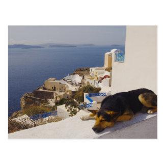 Ciudad de Grecia, isla de Santorini, Oia, el dormi Tarjetas Postales