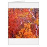 Ciudad de los árboles de Aspen del otoño de las ro Felicitaciones