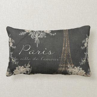 Ciudad de París de la pizarra de la torre Eiffel Cojín Lumbar