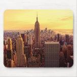 Ciudad del horizonte de Nueva York con el estado d Tapetes De Ratones