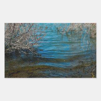 Ciudad del lago swamp del agua etiqueta