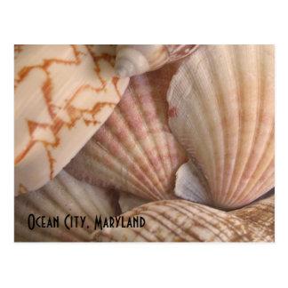 Ciudad del océano postal de Maryland