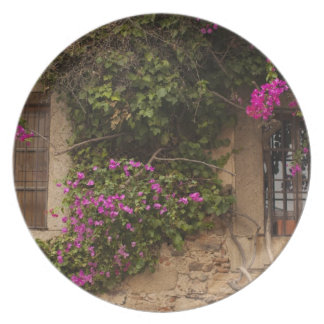 Ciudad Monumental, flower-covered buildings 2 Melamine Plate