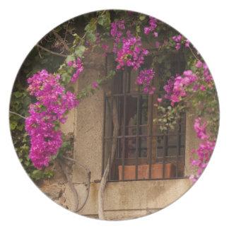 Ciudad Monumental, flower-covered buildings Melamine Plate