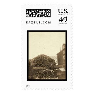 Ciudad SD 1888 del molino de la madera de Envio