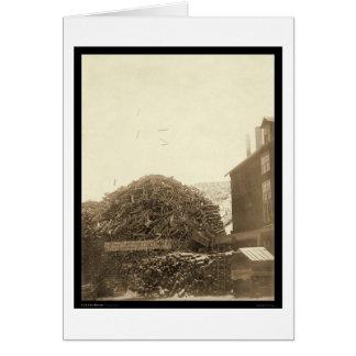 Ciudad SD 1888 del molino de la madera de Tarjeta De Felicitación