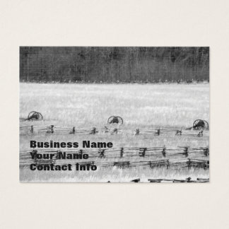 Civil War Cannons Photograph Business Card