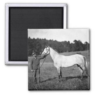 Civil War Horse, 1860s Magnet