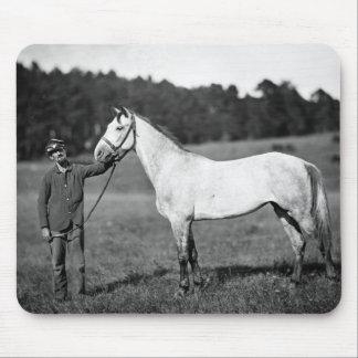 Civil War Horse, 1860s Mouse Pad