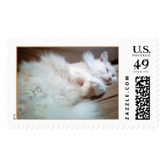 ck 922 stamps