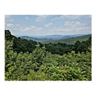 Clair - Shenandoah National Park Postcard