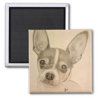 Claire el imán de Teddy Roosevelt Terrier