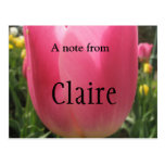 Claire Postales