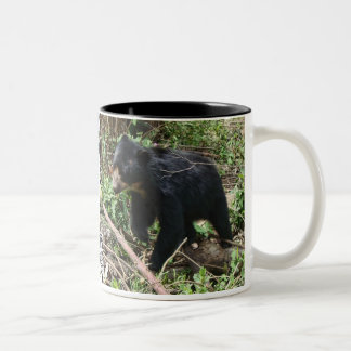 Clair's Coya Mug