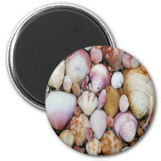 Clam Shell 2 Inch Round Magnet