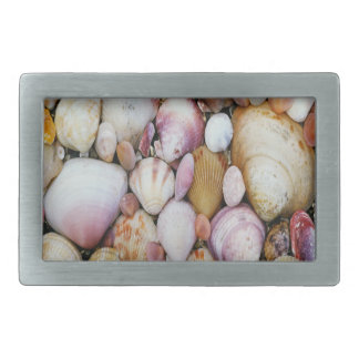 Clam Shell Belt Buckle
