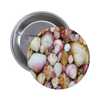 Clam Shell Button