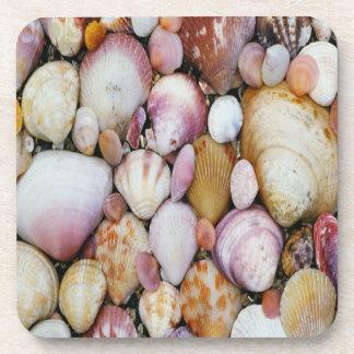 Clam Shell Coaster