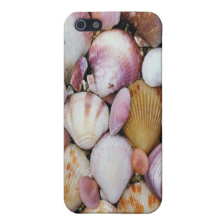 Clam Shell iPhone SE/5/5s Case