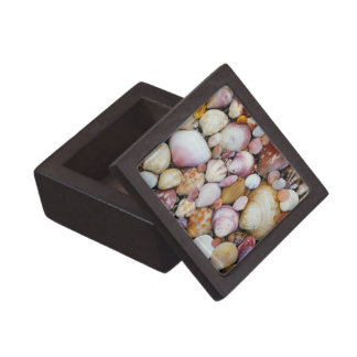 Clam Shell Jewelry Box