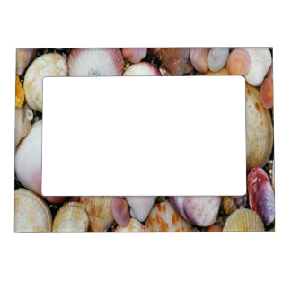 Clam Shell Magnetic Frame