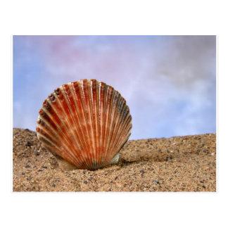 Clam shell postcard