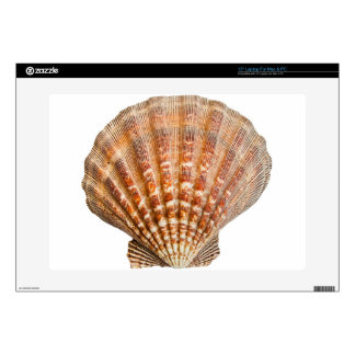 """Clam Shell 15"""" Laptop Skins"""
