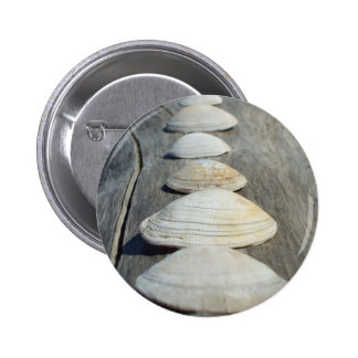 Clam Shells Button