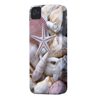 Clam Shells iPhone 4/4S Case-Mate Barely There iPhone 4 Cover
