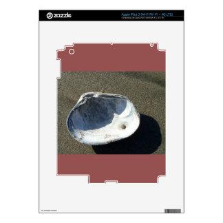Clamshell iPad 3 decals