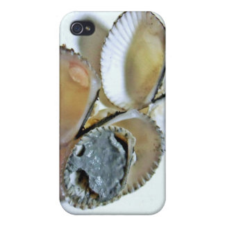 clamshell ,mud case for iPhone 4