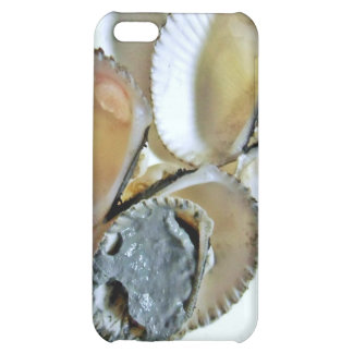 clamshell ,mud iPhone 5C cover