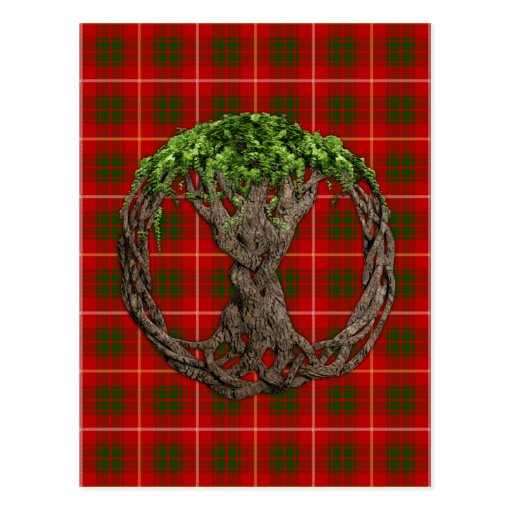 Clan Bruce Tartan And Celtic Tree Of Life Postcard